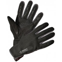 Перчатки Direct Alpine Skisport 1.0 black